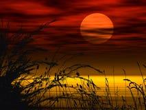 blom- solnedgång för bakgrund Arkivfoto