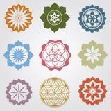 Blom- mini- mandalas Arkivbild