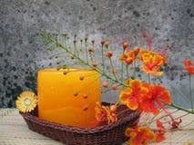 blom- stearinljus Royaltyfri Bild