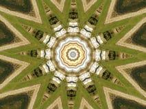 Blom- stil för färgmandala i gräsplan royaltyfri illustrationer