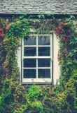 Blom- stugafönster royaltyfri fotografi