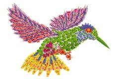 Blom- surr-fågel för paradis Arkivbild