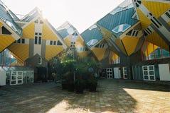 Blom sześcianu domy Zdjęcie Royalty Free