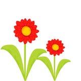 blom- tappning för kort Arkivbilder