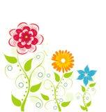 blom- tappning för kort Fotografering för Bildbyråer