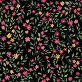 Blom- trädgårds- modell seamless bakgrundsblomma Arkivfoto