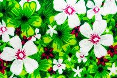 blom- tygmodell Royaltyfria Foton