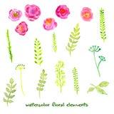 Blom- uppsättning för vektor av sidor och blommor Vektor Illustrationer