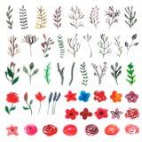 Blom- uppsättning för vektor Färgrik blom- samling med sidor och fl Fotografering för Bildbyråer