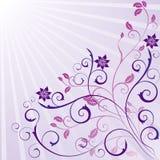 blom- utsmyckad scroll för skönhetdesign stock illustrationer