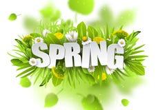 Blom- vårbakgrund med maskrosor och kamomillar på vit bakgrund Fotografering för Bildbyråer