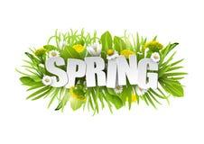 Blom- vårbakgrund med maskrosor och kamomillar på vit bakgrund Royaltyfri Fotografi