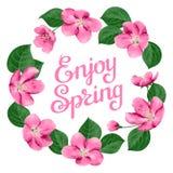 Blom- vårkort Arkivbild