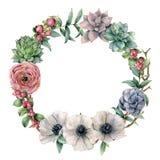 Blom- vattenfärg och exotisk krans för bär Räcka den målade ranunculusen, anemonen, suckulenten, det röda bäret och eukalyptuns stock illustrationer