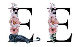 Blom- vattenfärgalfabet Design för initial bokstav E för monogram med den hand drog pion- och anemonblomman och den svarta panter Royaltyfri Fotografi