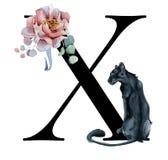 Blom- vattenfärgalfabet Design för initial bokstav X för monogram med den hand drog pion- och anemonblomman och den svarta panter Royaltyfria Foton