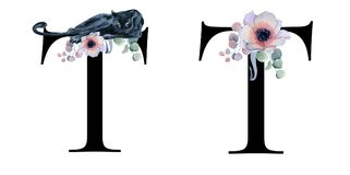 Blom- vattenfärgalfabet Design för initial bokstav T för monogram med den hand drog pion- och anemonblomman och den svarta panter Royaltyfri Bild