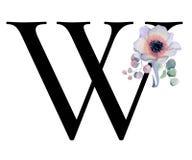 Blom- vattenfärgalfabet Design för W för initial bokstav för monogram med den hand drog pion- och anemonblomman och den svarta pa Arkivbild