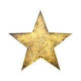 blom- vattenfärg för stjärna för rock för grungemikrofonprydnad Royaltyfri Bild