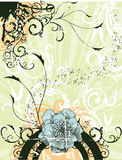 blom- vektor Royaltyfria Foton