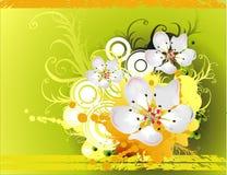 blom- vektor Fotografering för Bildbyråer