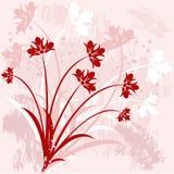 blom- vektor för bakgrund Arkivfoton