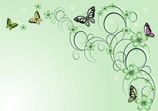 blom- vektor för bakgrundsfjärilar Royaltyfri Fotografi