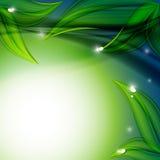 Blom- vektorbakgrund. Eps10 Royaltyfri Fotografi