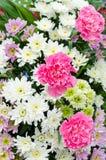Blombukett Royaltyfria Bilder