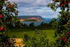 Blomidon la Nouvelle-Écosse à la moisson Photographie stock