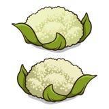 Blomkål Arkivfoto