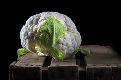 Blomkål i mörk matfotografistil fotografering för bildbyråer