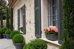 Blomkruka i det utomhus- fönstret Arkivfoton