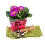 Blomkruka med trädgårds- hjälpmedel Royaltyfri Bild