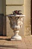 blomkruka på bakgrunden Royaltyfri Bild