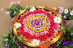 blomkruka på bakgrunden Royaltyfria Bilder