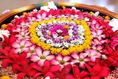 blomkruka på bakgrunden Royaltyfri Foto