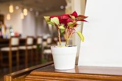 Blomkruka på tabellen i kafét fotografering för bildbyråer