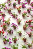 Blomkrukor och färgrik blomma på en vit vägg, gammal europé till fotografering för bildbyråer