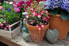 Blomkrukor på en trätabell Royaltyfri Fotografi