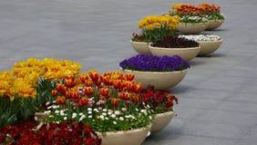Blomkrukor på gatan Arkivfoto