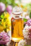 Blommaörter för nödvändig olja och läkarundersökning Arkivfoto