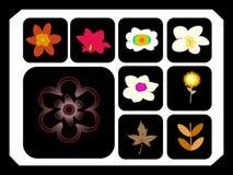 blomma royaltyfri illustrationer