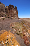 blomma arrecife lanzarote Spanien den gamla väggslottvaktposten Arkivfoto