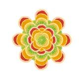 Blomma av den skivade citronen, apelsinen, limefrukt och den röda grapefrukten royaltyfri bild