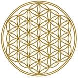 Blomma av liv - sakral geometri stock illustrationer