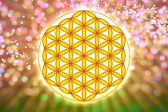 Blomma av Live Symbol - sakral geometri Arkivbilder
