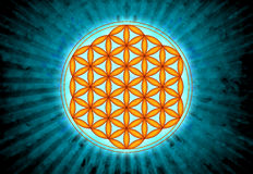 Blomma av Live Symbol - sakral geometri Royaltyfri Foto