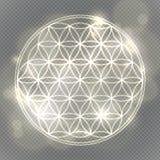 Blomma av livstid Sakral geometri, vektornegro spiritualsymbol stock illustrationer