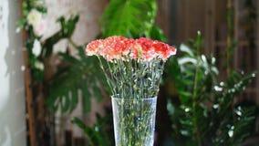 Blomma buketten i strålarna av ljus, rotation, den blom- sammansättningen består av ljus orange turkisk nejlika I arkivfilmer